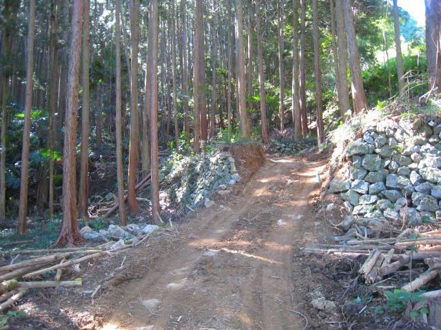 初々しい今年から始めた自伐型林業者たち_e0002820_07193216.jpg