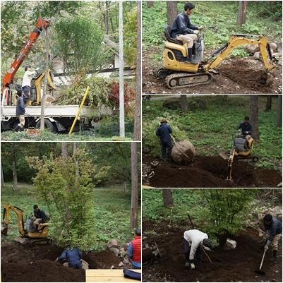 10月の八ヶ岳(2) ~ヤマボウシとキッチンタイルに庭仕事~_a0254243_1811263.jpg