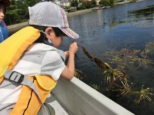 たらい舟に乗ってみよう in近江舞子内湖_e0008880_22285932.jpg