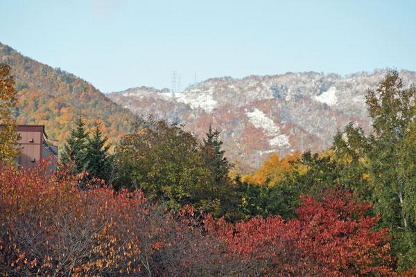 山には雪_d0162994_9461460.jpg