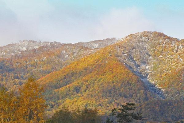 山には雪_d0162994_9465187.jpg