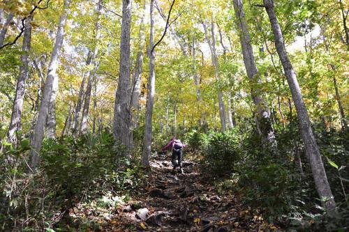 """2015年10月『深秋の八剣山』 October 2015 \""""Mt Hakkenzan (Mt Eight Teeth) in autumn colour\""""_c0219616_17482230.jpg"""