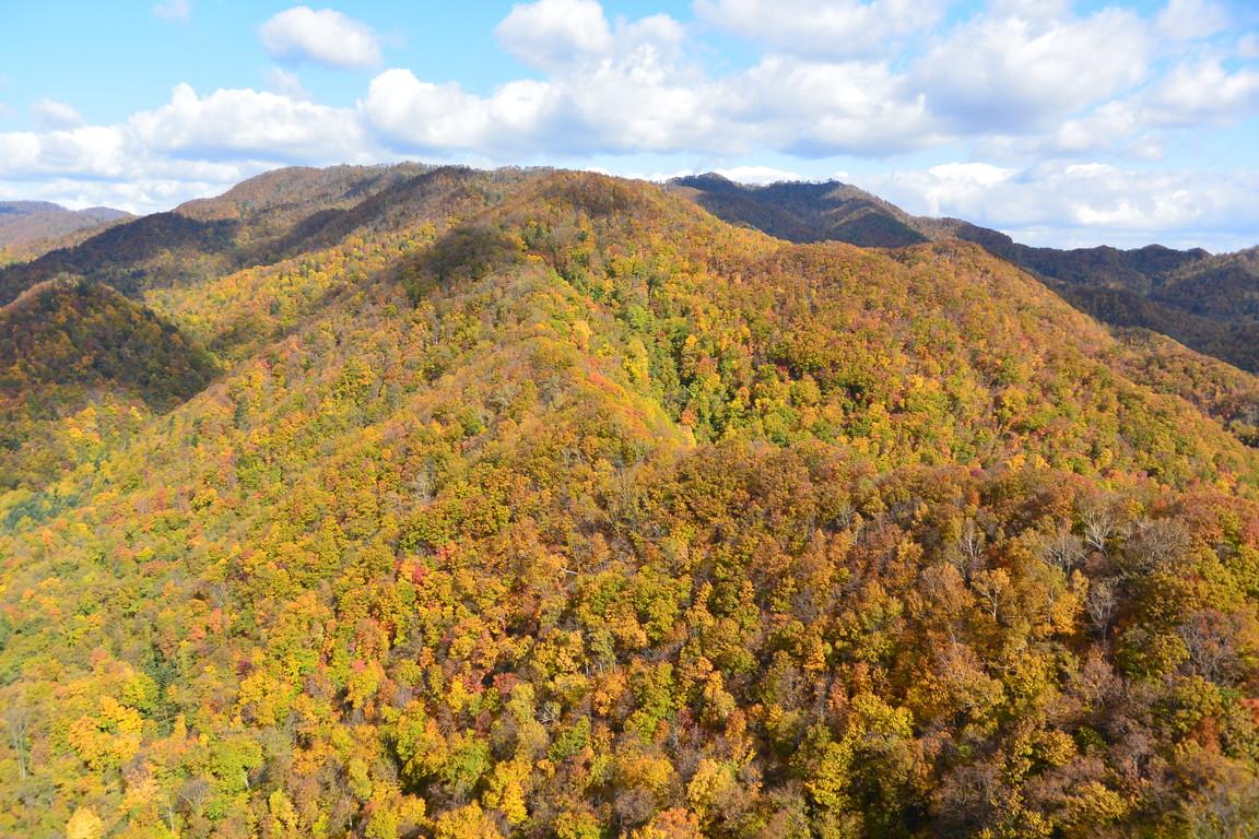 """2015年10月『深秋の八剣山』 October 2015 \""""Mt Hakkenzan (Mt Eight Teeth) in autumn colour\""""_c0219616_17551047.jpg"""