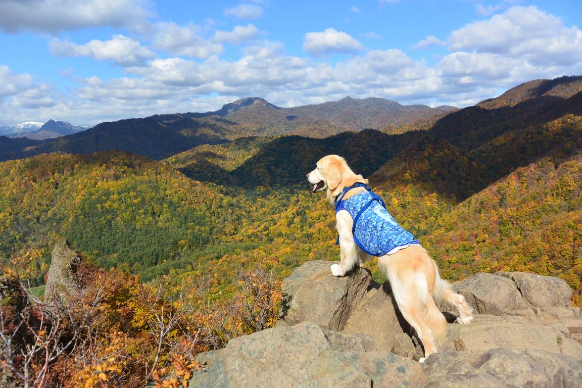 """2015年10月『深秋の八剣山』 October 2015 \""""Mt Hakkenzan (Mt Eight Teeth) in autumn colour\""""_c0219616_17571446.jpg"""