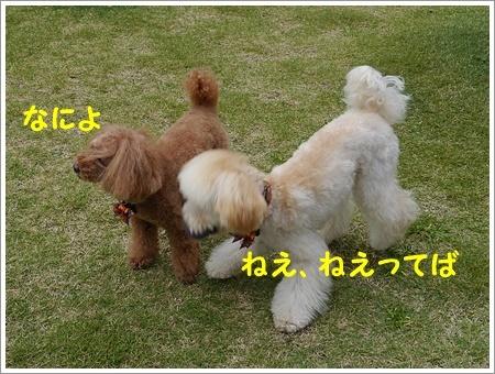 b0175688_20073303.jpg