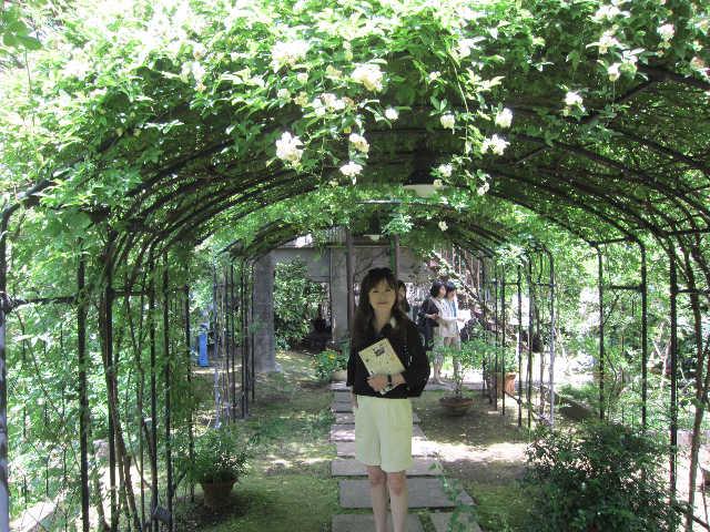 薔薇、薔薇、薔薇♪_d0339889_12070266.jpg