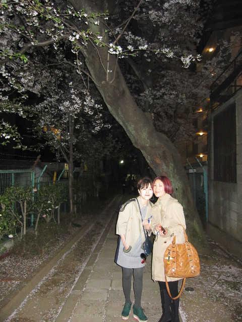 それでも桜は美しい_d0339889_12070997.jpg