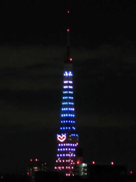 東京タワーイルミネーション♪_d0339889_12073202.jpg