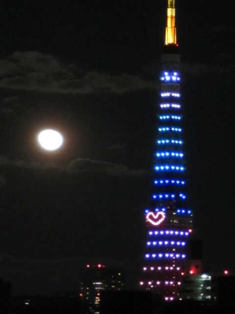 東京タワーイルミネーション♪_d0339889_12073208.jpg