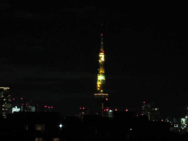 東京タワーイルミネーション♪_d0339889_12073233.jpg