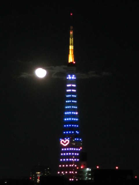 東京タワーイルミネーション♪_d0339889_12073300.jpg