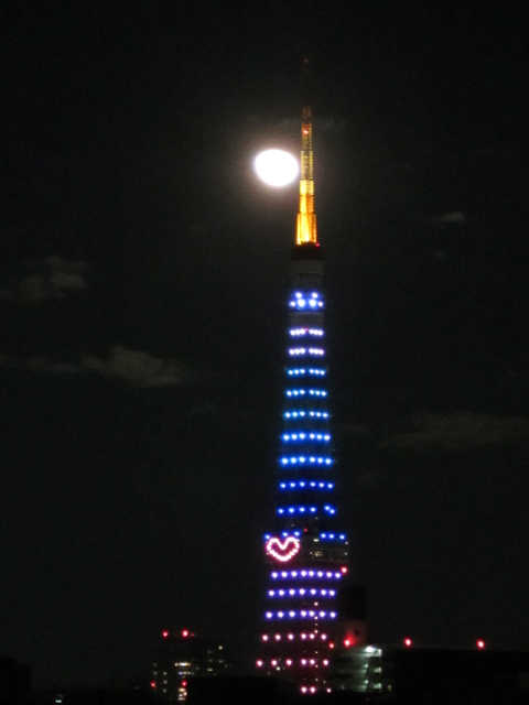 東京タワーイルミネーション♪_d0339889_12073309.jpg