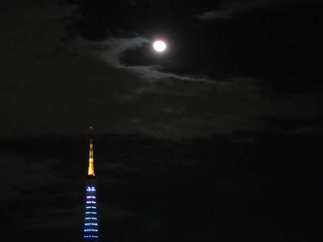 東京タワーイルミネーション♪_d0339889_12073356.jpg