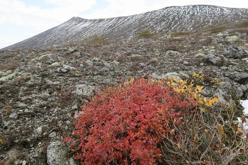 樽前山、10月15日_f0138096_214281.jpg