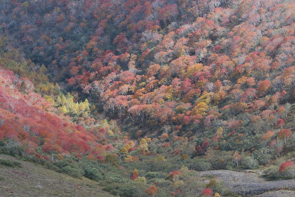 樽前山、10月15日_f0138096_21431384.jpg