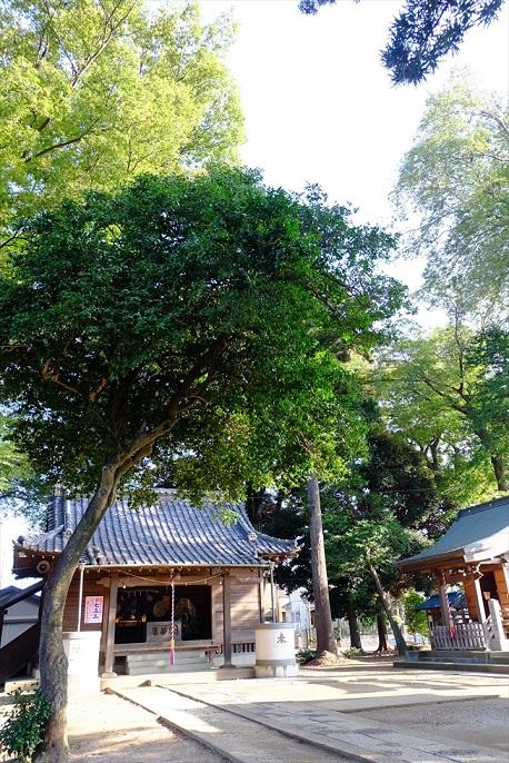 f0113108_2011566.jpg