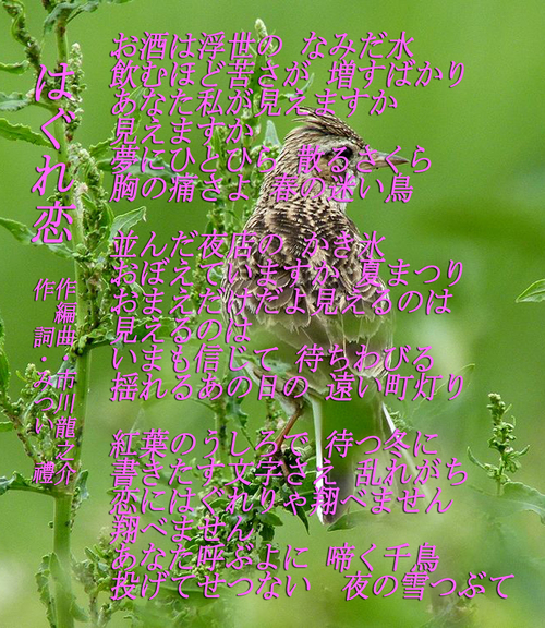 d0095910_6344511.jpg