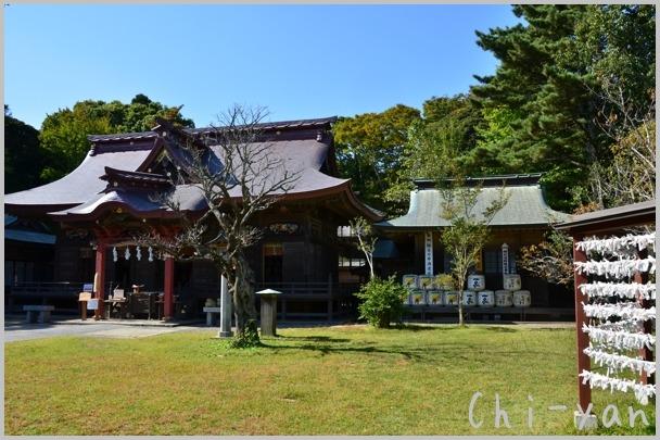 コキアが見頃の 「国営ひたち海浜公園」 と 「大洗磯前神社」_e0219011_10554223.jpg
