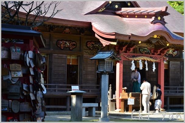 コキアが見頃の 「国営ひたち海浜公園」 と 「大洗磯前神社」_e0219011_10555153.jpg