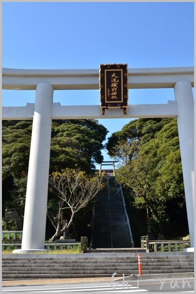 コキアが見頃の 「国営ひたち海浜公園」 と 「大洗磯前神社」_e0219011_10574068.jpg