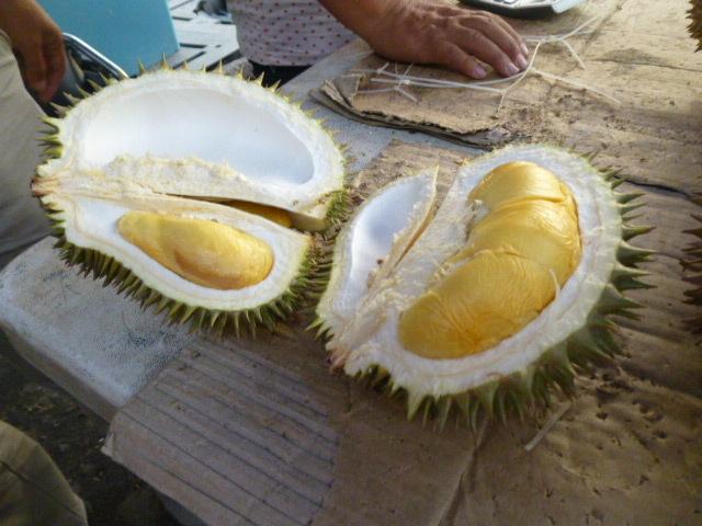 ツアー3日目 トロピカルフルーツと海鮮料理(ショー付き) 1_d0336014_15313926.jpg