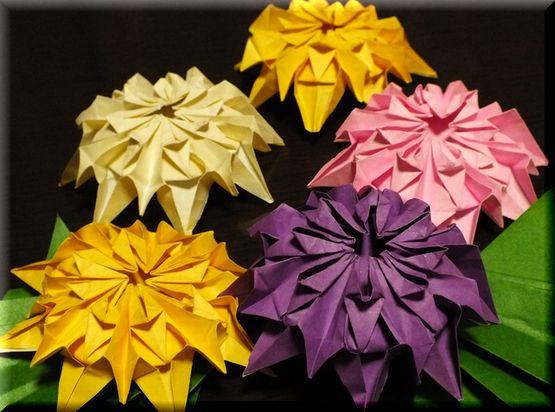 クリスマス 折り紙 折り紙 菊 : cosmos1009.exblog.jp