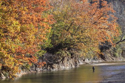 白糠・紅葉の茶路川を眺めて 10月16日_f0113639_19213030.jpg