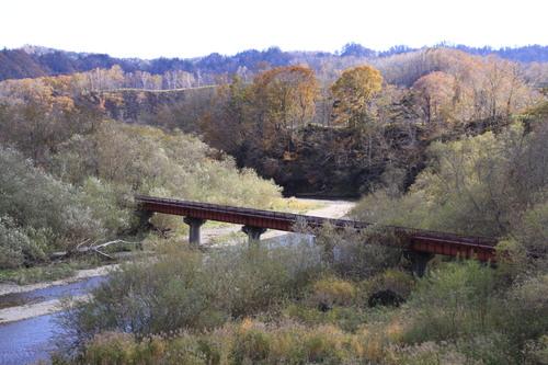 白糠・紅葉の茶路川を眺めて 10月16日_f0113639_19231794.jpg