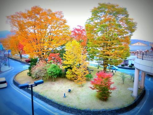 軽井沢の紅葉速報・2015_f0236260_21253456.jpg