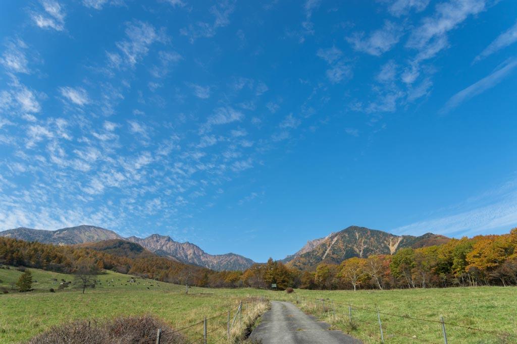 八ヶ岳牧場・・・続き_b0179231_1042367.jpg