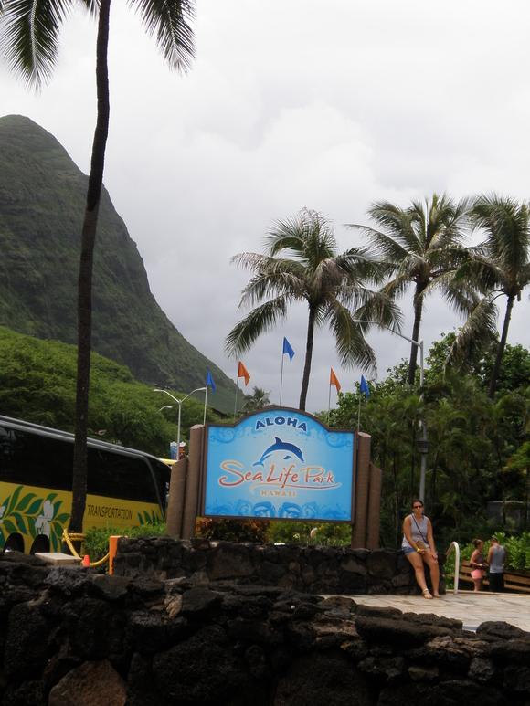 2015 夏季休暇 IN HAWAII  ②-3_d0062076_1033938.jpg
