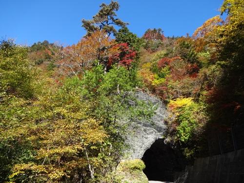 快晴の瓶ヶ森林道_e0201281_20122422.jpg