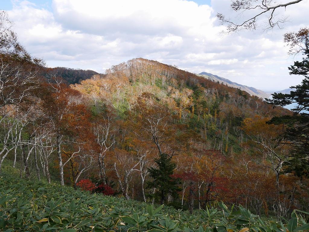 イチャンコッペ山の紅葉、10月15日_f0138096_17465478.jpg