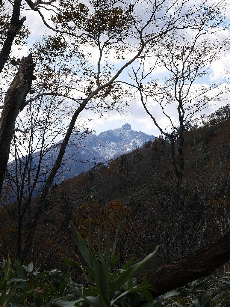 イチャンコッペ山の紅葉、10月15日_f0138096_17471829.jpg