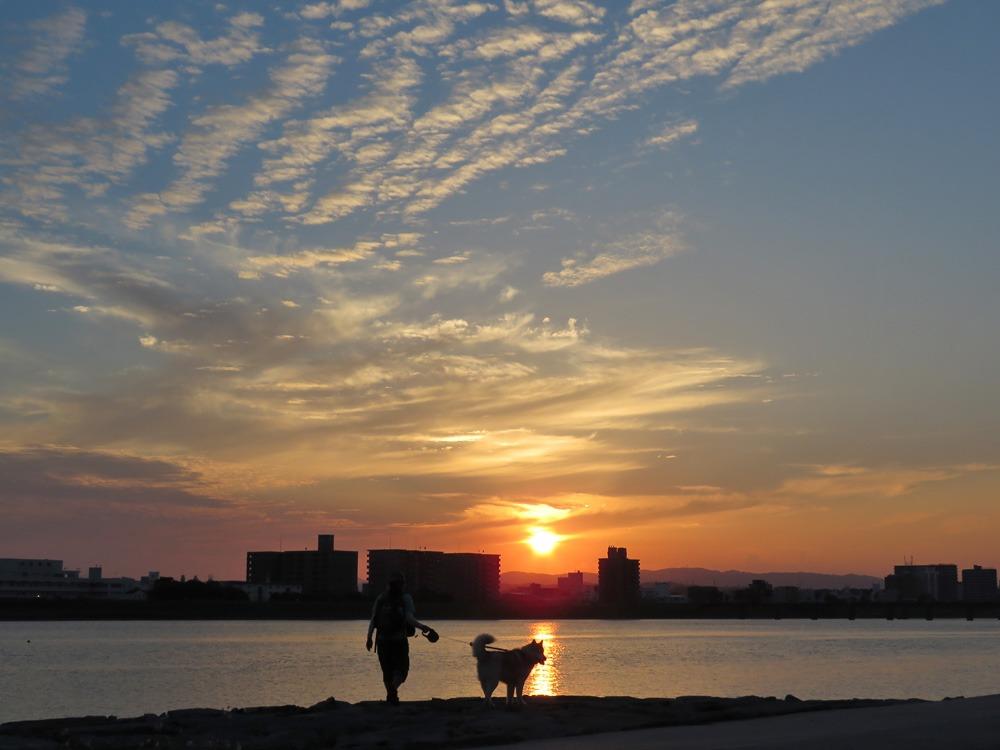 夕暮れさんぽ、いい季節(*^_^*)_c0049299_22145014.jpg