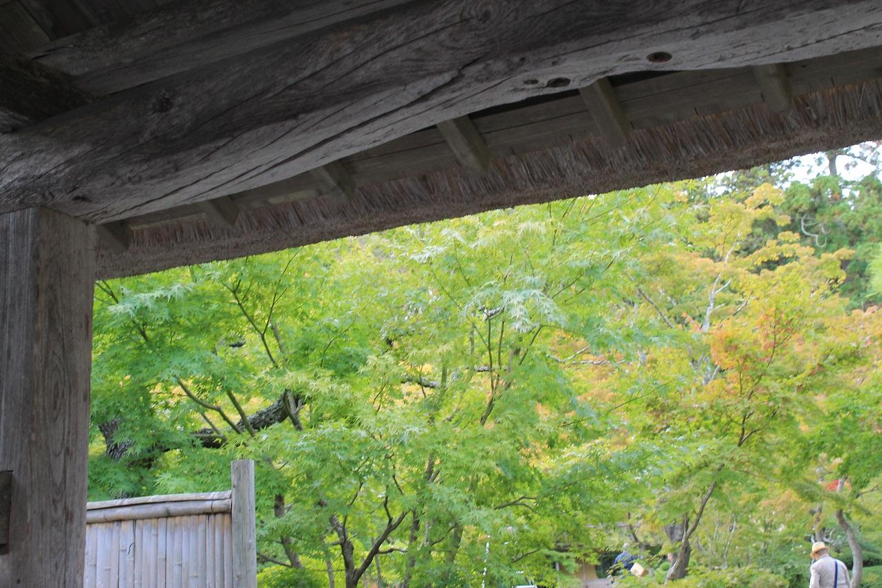 ~黒森料理とのお茶会&季節お取り寄せ~_f0070743_18362759.jpg