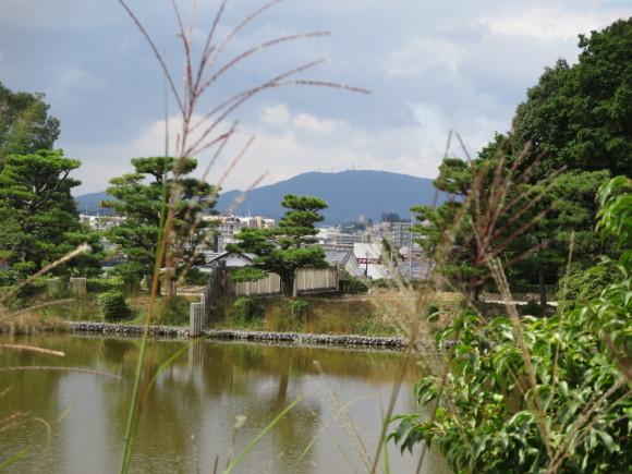 佐紀路の踏切と天皇陵とタバコ屋と_c0001670_16325805.jpg