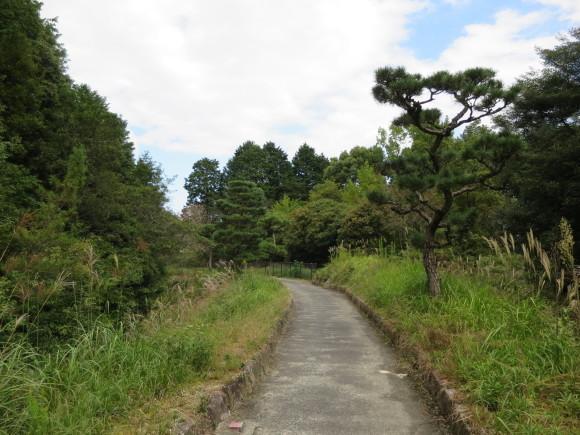 佐紀路の踏切と天皇陵とタバコ屋と_c0001670_16330250.jpg