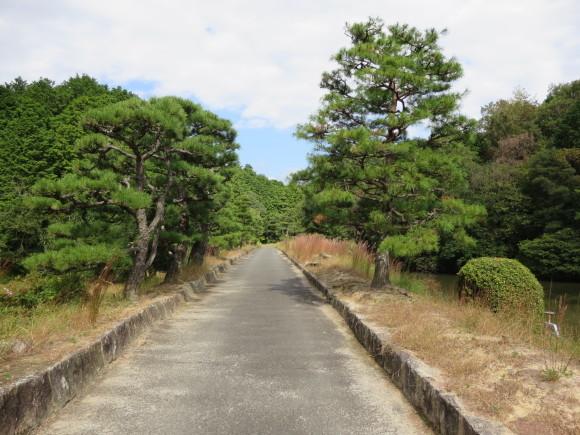 佐紀路の踏切と天皇陵とタバコ屋と_c0001670_16330893.jpg