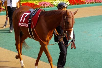 府中牝馬Sは伏兵ノボリディアーナが初重賞制覇_b0015386_07419.jpg