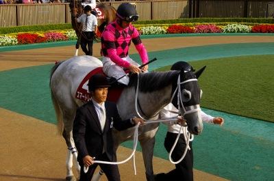 府中牝馬Sは伏兵ノボリディアーナが初重賞制覇_b0015386_07994.jpg
