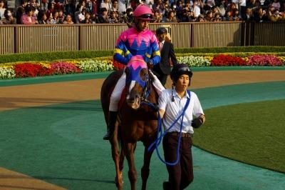 府中牝馬Sは伏兵ノボリディアーナが初重賞制覇_b0015386_082377.jpg
