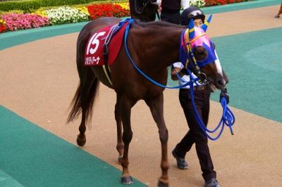 府中牝馬Sは伏兵ノボリディアーナが初重賞制覇_b0015386_08933.jpg