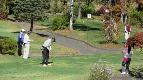 2015第14回パークゴルフ定期大会の様子_b0219993_17513796.jpg