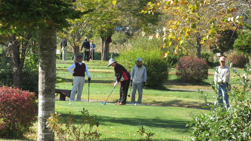 2015第14回パークゴルフ定期大会の様子_b0219993_17523284.jpg