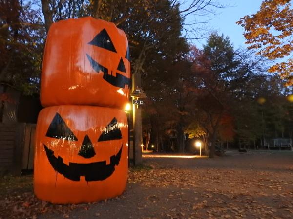 お化けかぼちゃ現る_b0174425_20110334.jpg