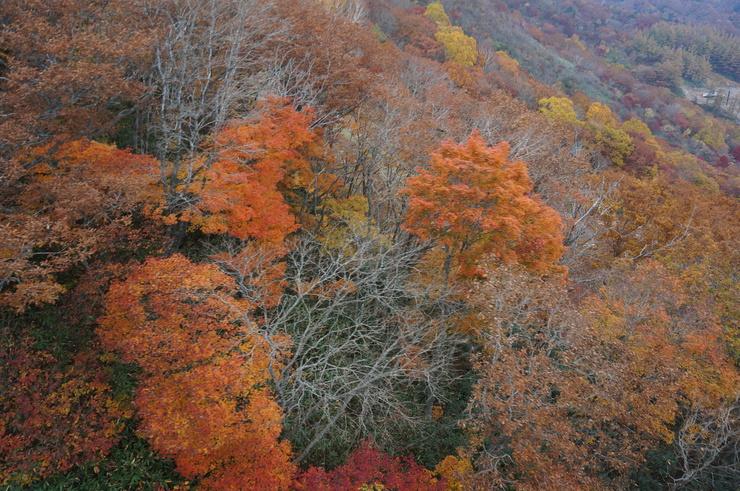 4週連続の安達太良山山行_b0233441_14251152.jpg