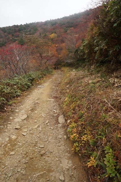 4週連続の安達太良山山行_b0233441_15102186.jpg
