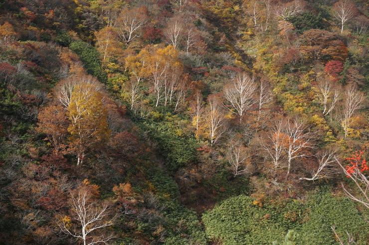 4週連続の安達太良山山行_b0233441_1585312.jpg