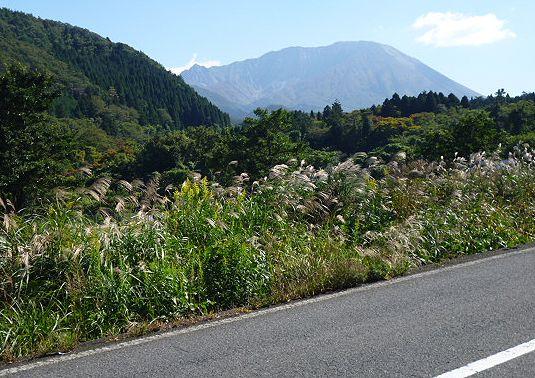 大山道を歩く(坊領道)_b0156456_18373371.jpg